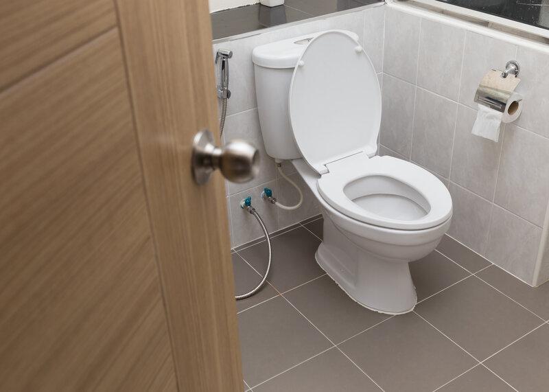 Toilet Inspection Leesburg
